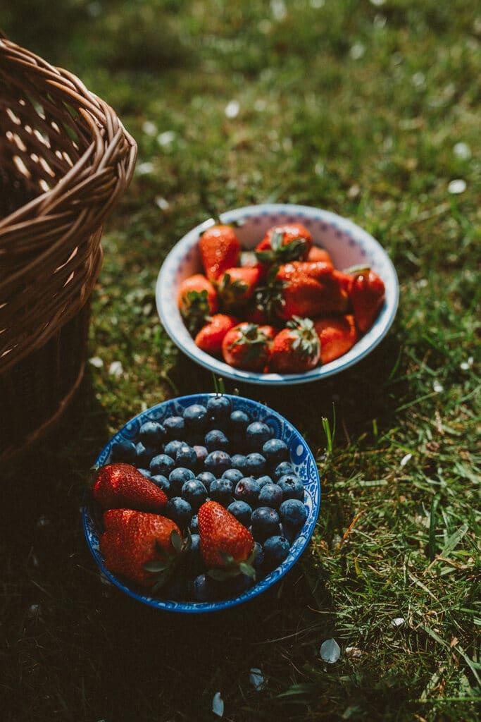 Erdbeeren und Blaubeeren im Garten naschen