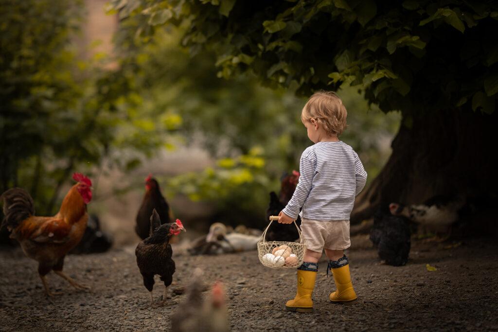 Bauernhof Fotoshooting kleiner jung hält Eierkörbchen bei den Hühnern