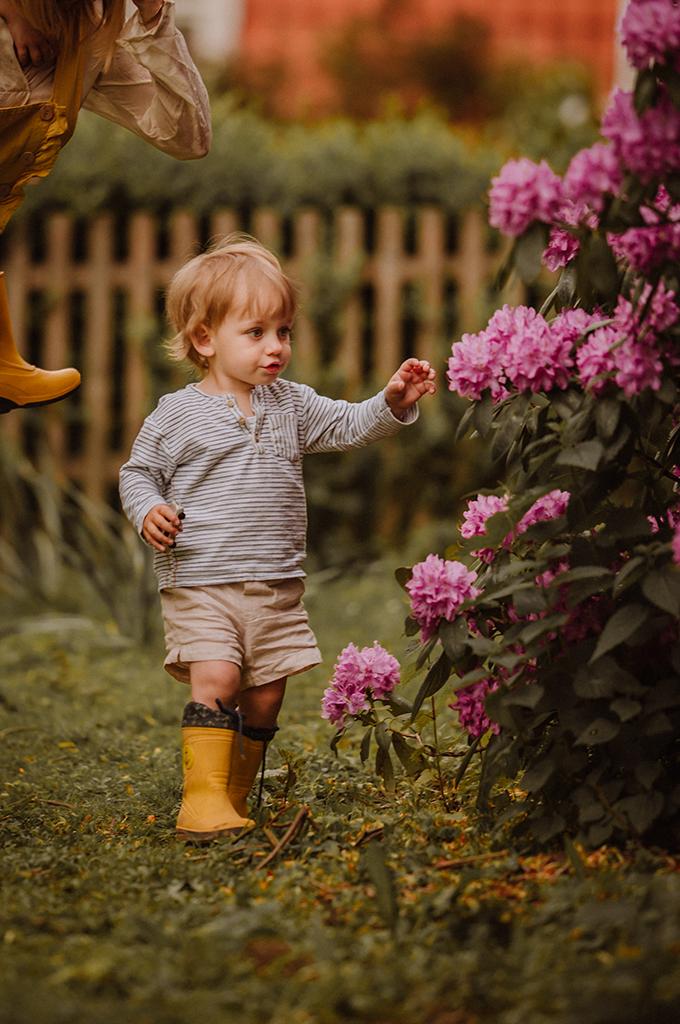 kind schaut sich Rhododendron